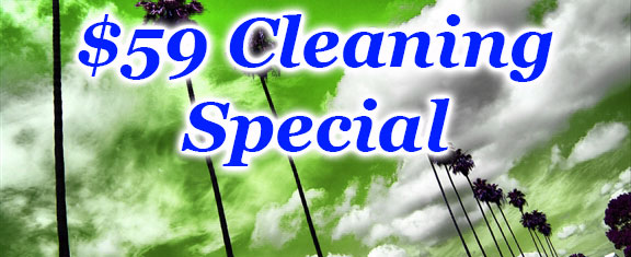 $59 Office Cleaning Special